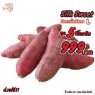 Silk Sweet Size L
