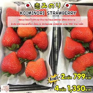 KOIMINORI Strawberry