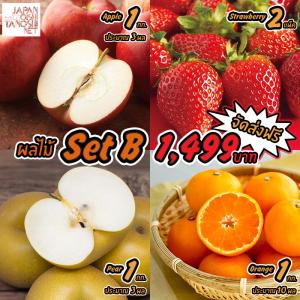 Japanese Fruit Set B
