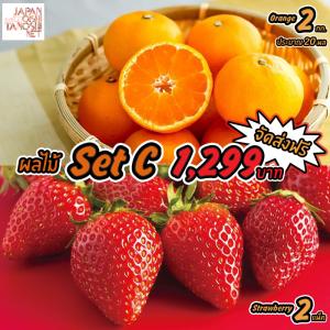 Japanese Fruit Set C