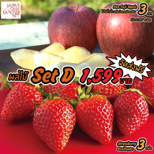 Japanese Fruit Set D