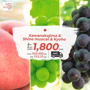 kawanakajima peach  + shine muscat +  kyoho