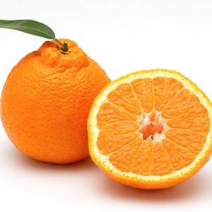 ส้มญี่ปุ่นชิรานุอิ/เดโกปอง