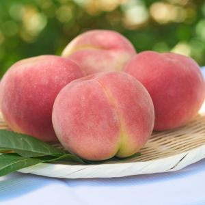 Peach-Kawanakajima