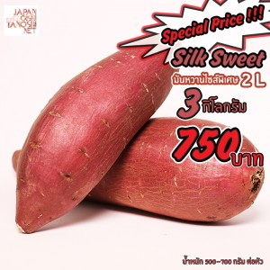 Slik Sweet 2L