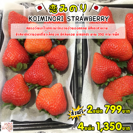 KOIMINORI Strawberry