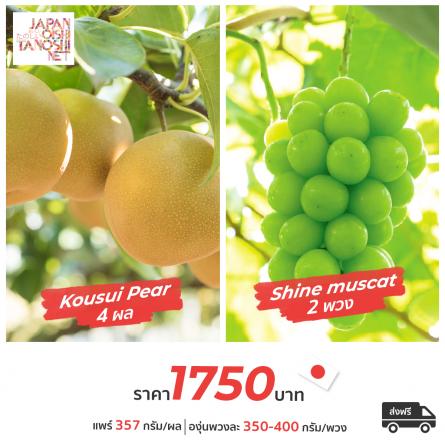Kousui Pear + Shine muscat