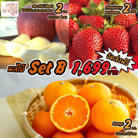 Japanese Fruit Set B