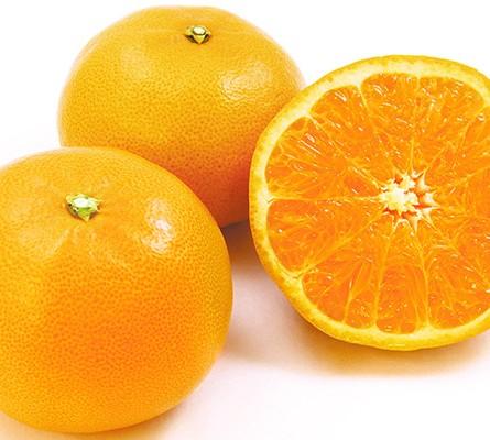 ส้มญี่ปุ่นเซโตกะ