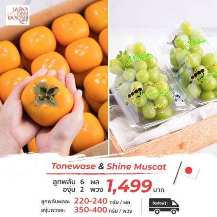 Tonewase 2L + Shine muscat