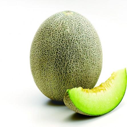 Takami Melon
