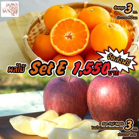 Japanese Fruit Set E